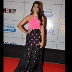 Colourfull Celebs at Mausam Premiere |Floral prints and Multicolour fashion