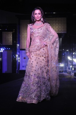 Bridal designer saree- Aamby valley bride week 2011- multicolour