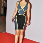 Hot or Not? Natasha Poonawala in Neon Trimmed dress
