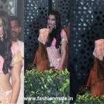Sonam Kapoor ina pink saree at Kareena Kapoor and Saif Ali Khan's Wedding Reception