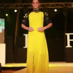 Evelyn Sharma walks the ramp for Narendra kumar at India Resort Fashion Week