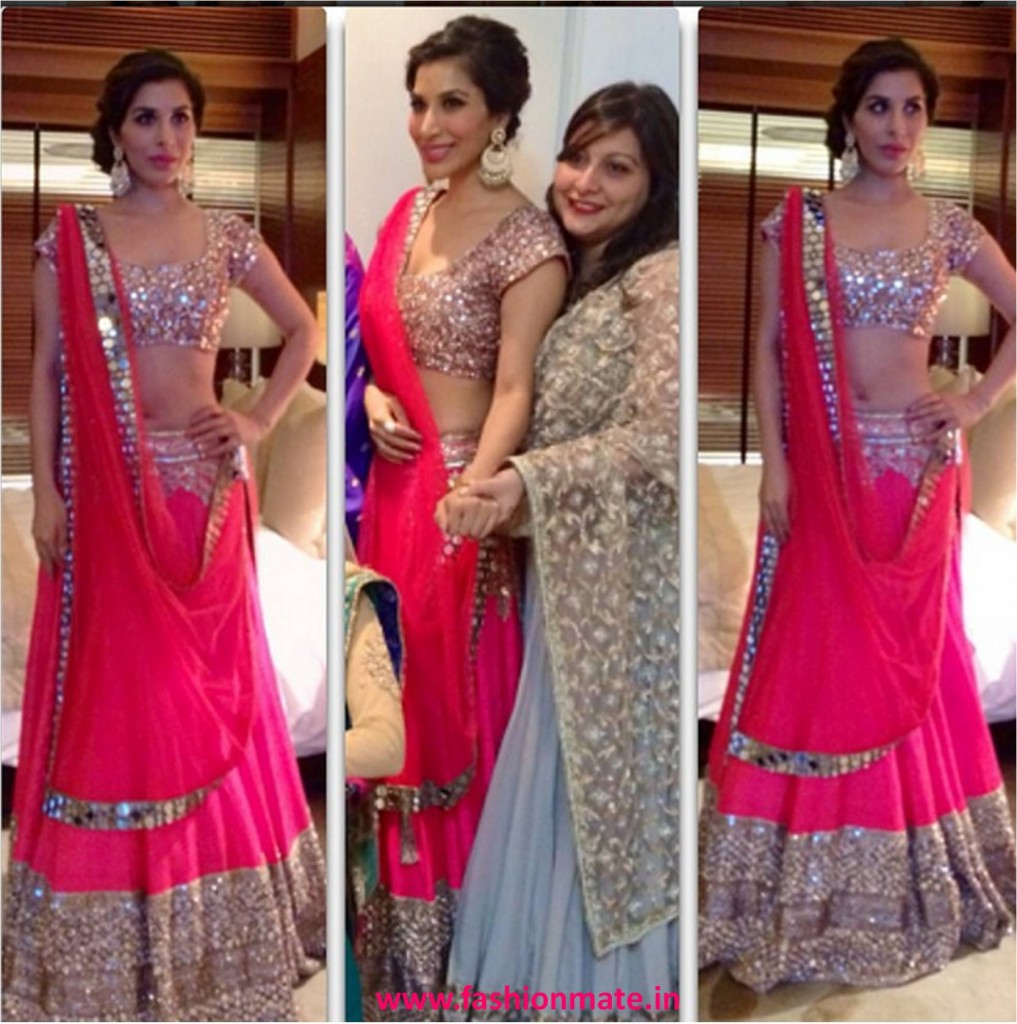 Sophie Choudry In Manish Malhotra For Dia Mirza Wedding 2014