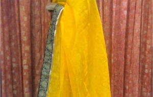 Outfit of the day – Bhagalpuri Silk Saree from Sareez.com